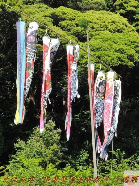 日本九州DSCN8716.JPG
