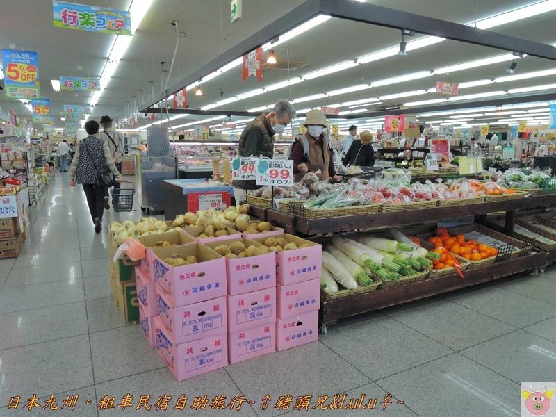 日本九州DSCN8758.JPG