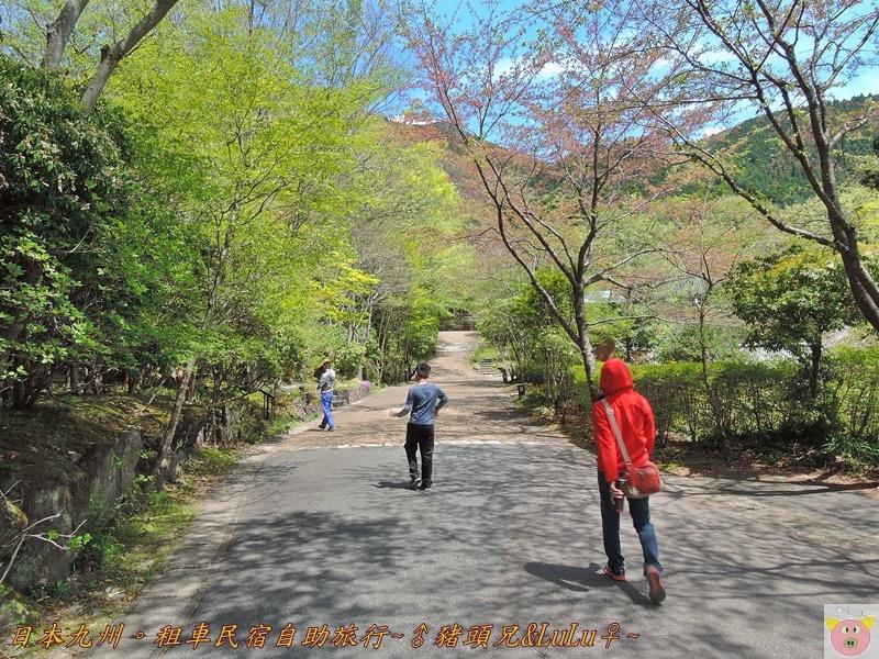 日本九州DSCN8838.JPG
