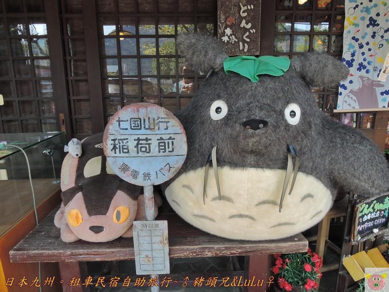 日本九州DSCN8855.JPG