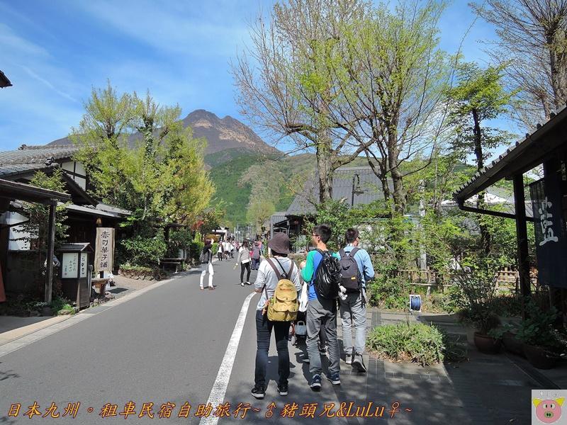 日本九州DSCN8873.JPG