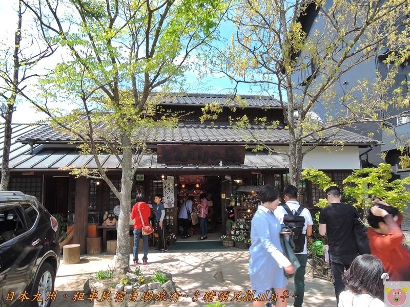 日本九州DSCN8853.JPG