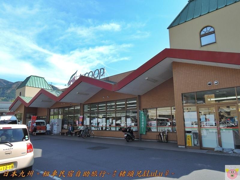 日本九州DSCN8891.JPG