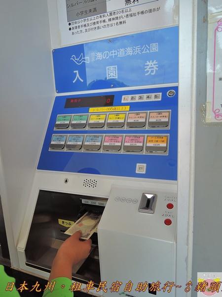日本九州DSCN8962.JPG
