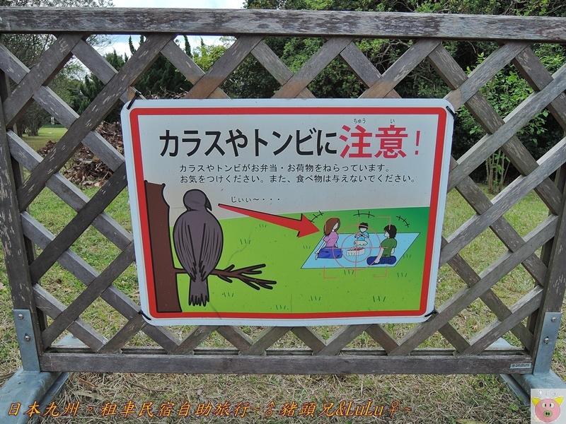日本九州DSCN8979.JPG