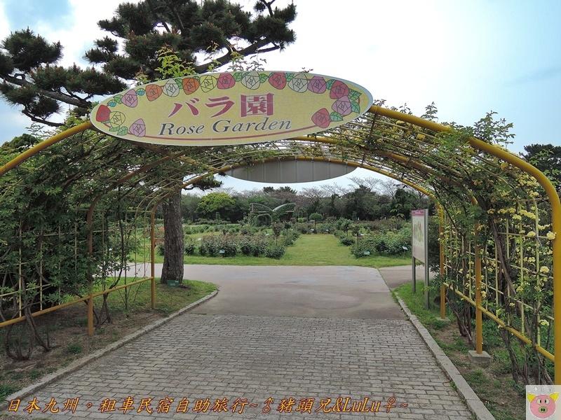 日本九州DSCN9137.JPG