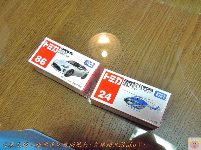 日本九州DSCN9146.JPG
