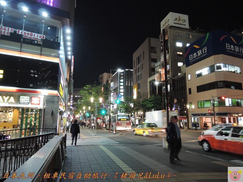 日本九州DSCN9205.JPG