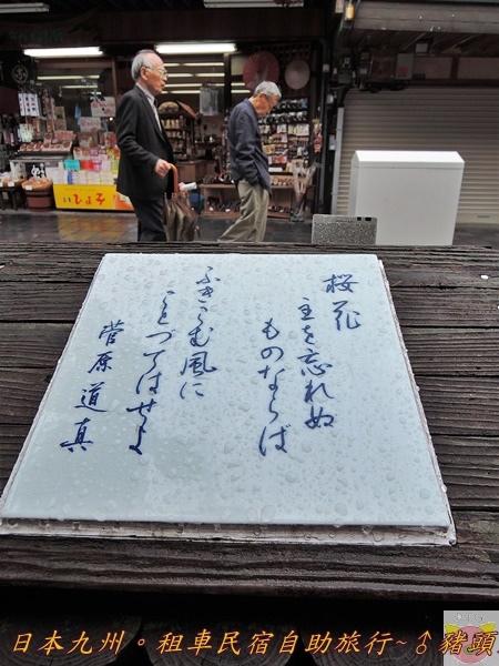 日本九州DSCN9312.JPG