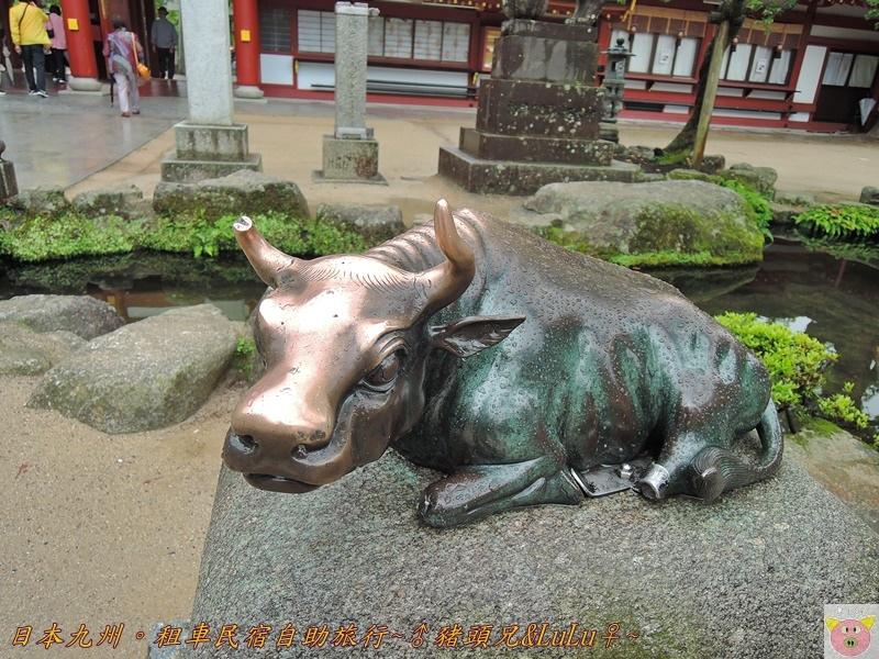日本九州DSCN9327.JPG