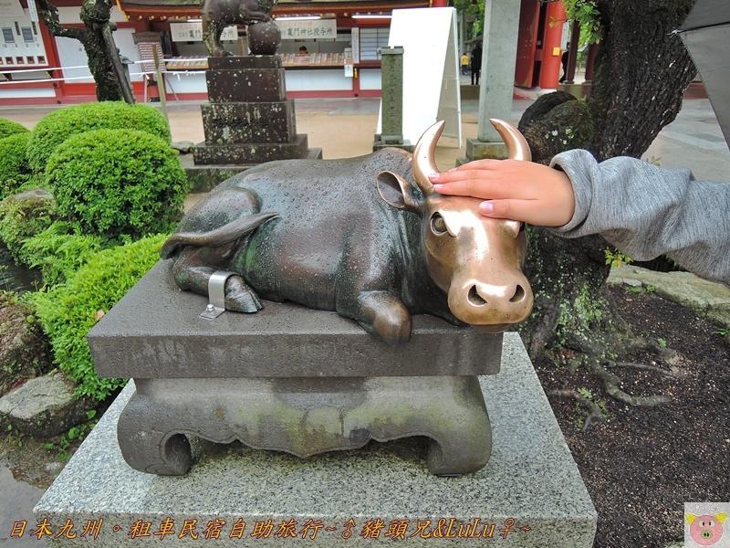 日本九州DSCN9333.JPG