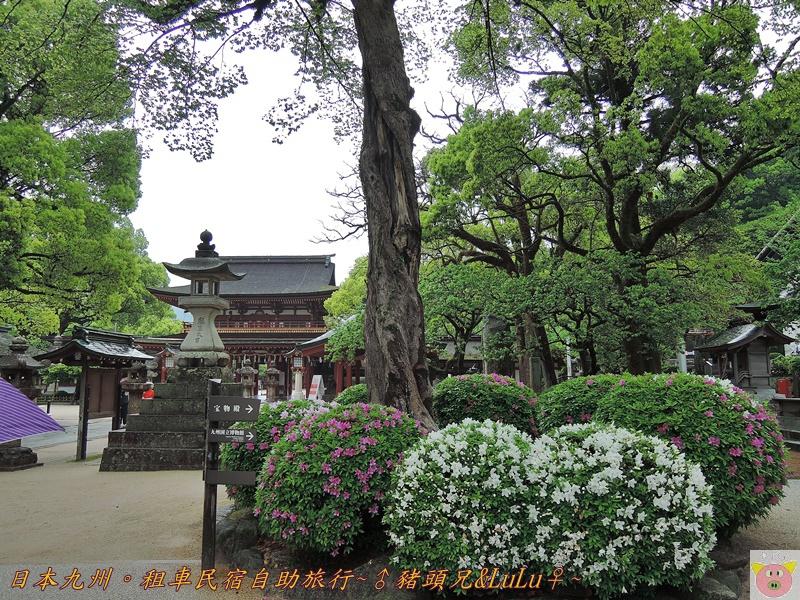 日本九州DSCN9345.JPG