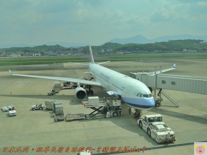 日本九州DSCN9410.JPG