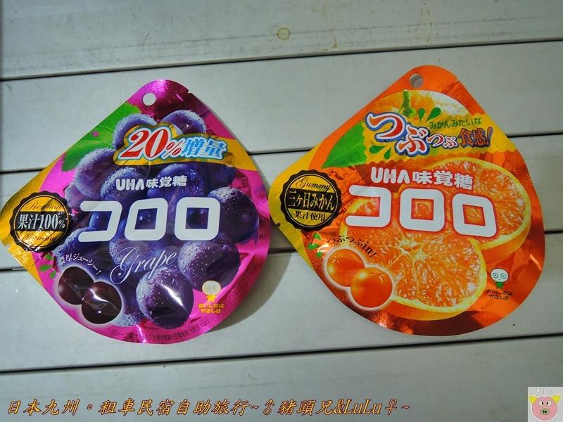 日本九州DSCN9431.JPG