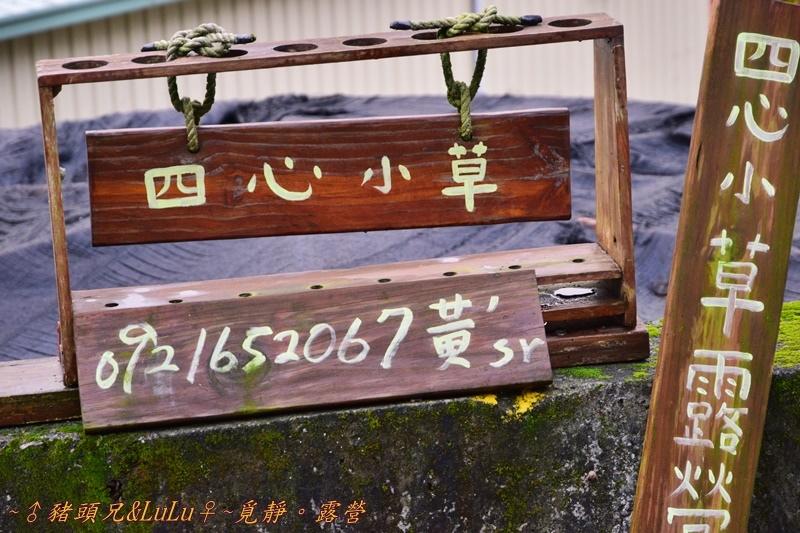 山福情森四心小草 (3).JPG