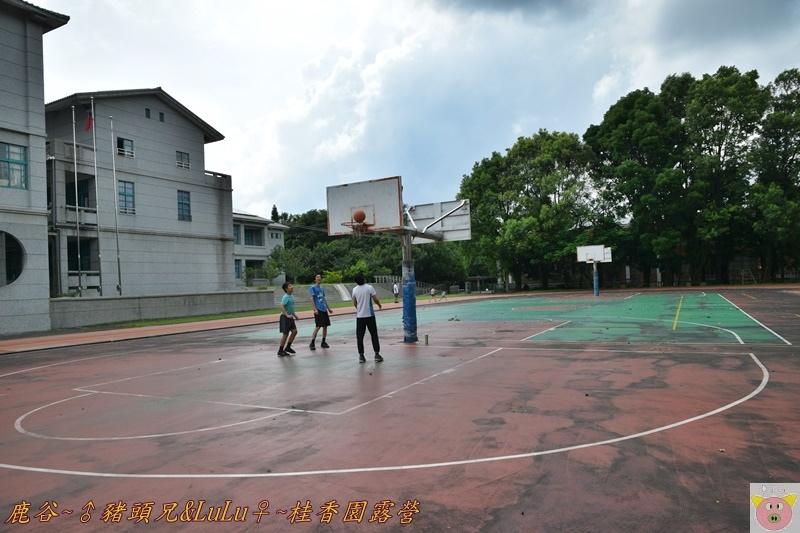 桂香園DSC_0230.JPG