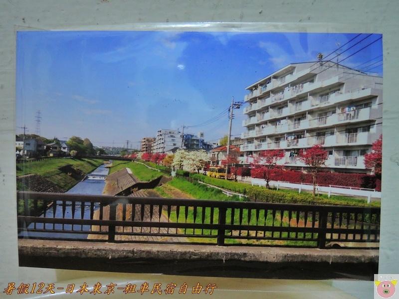 東京12天DSCN1586.JPG
