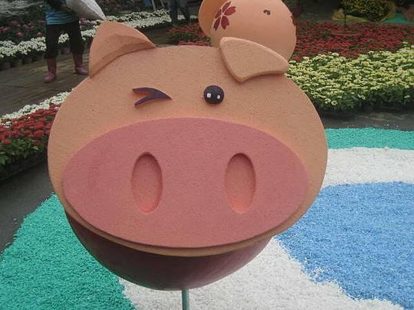 可愛到極點的豬