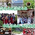 日本靜岡茶娘體驗
