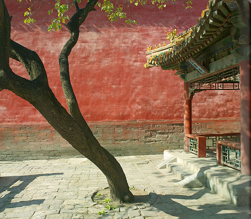 aspb_forbidden_city10_alb.jpg
