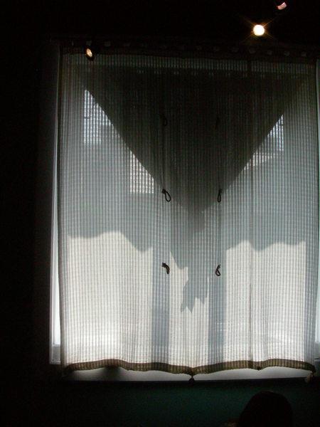 二樓的窗廉