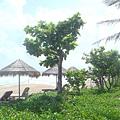 沙灘旁有躺椅