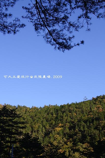 Wuling_3