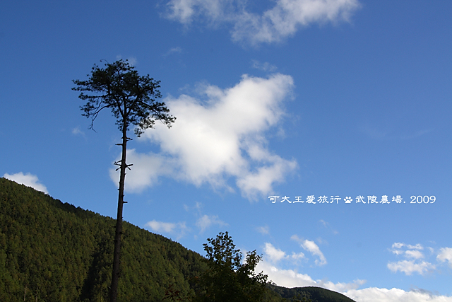 Wuling_21