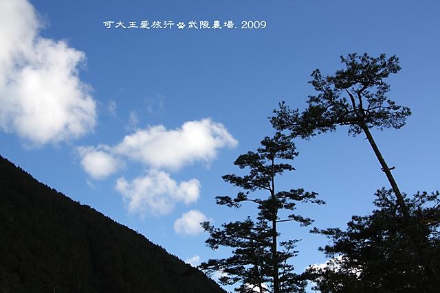 Wuling_20