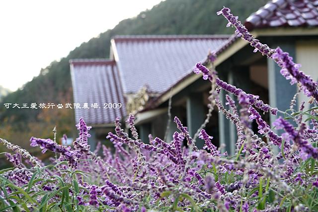 Wuling_30