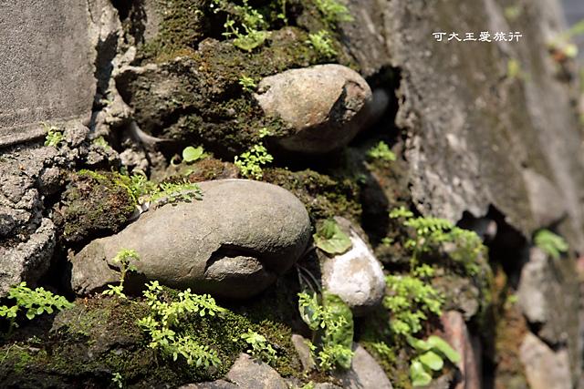 Treasure Hill _13.jpg