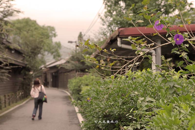 Lintian_11.jpg