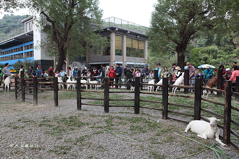 goatsfarm_16.jpg