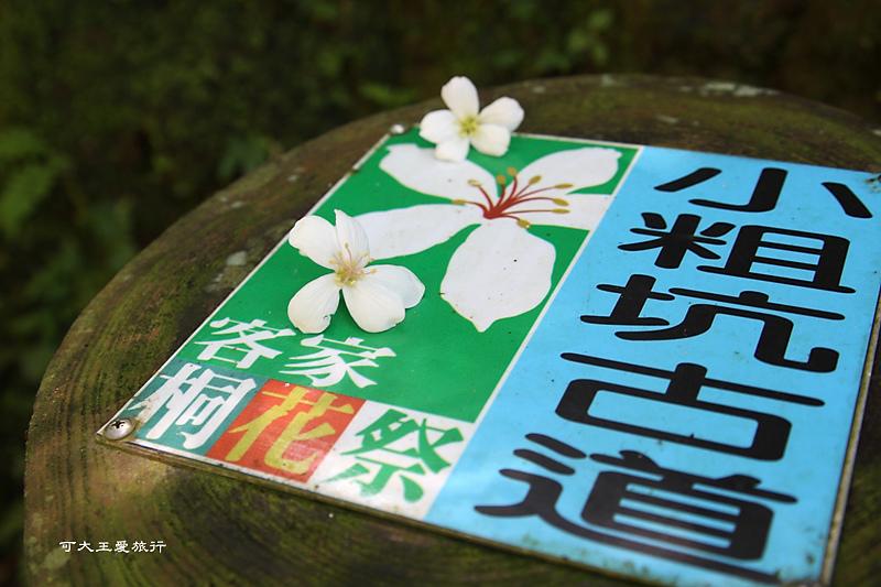 tung blossom_9.jpg