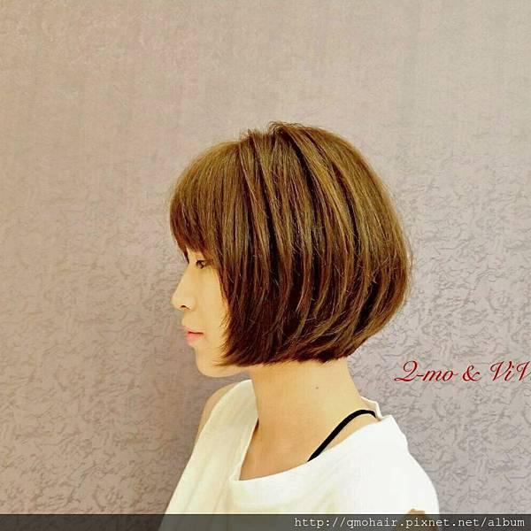 中短髮.想留長(低層次)