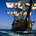 561px-The_hms_surprise_at_full_sail.png