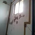 20130822_114442.jpg
