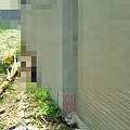 外牆01.jpg