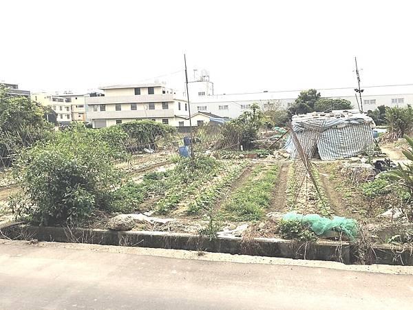 神林74小田_180319_0004
