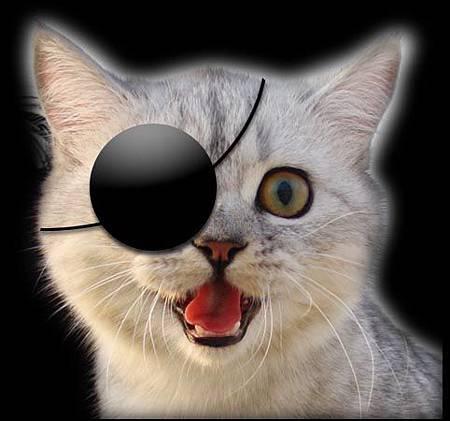 哈氣時的圓眼睛