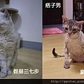 20130518氣質女&痞子男
