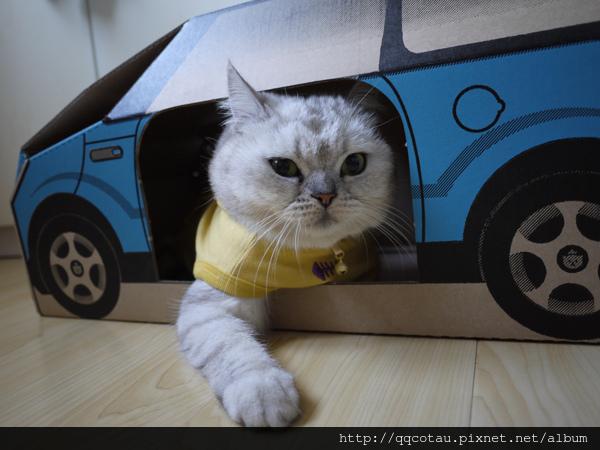 1-1這是我的新車車,我阿木說是Grace姨姨送的.jpg