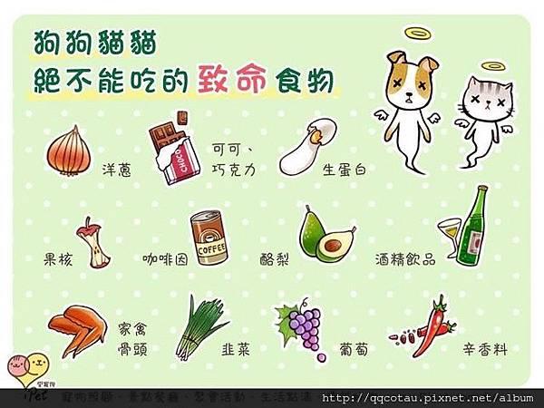 貓咪不能吃的東西(來自:ipet愛寵物).jpg