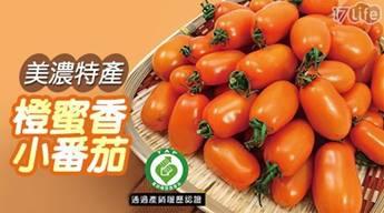 美濃特產-橙蜜香小蕃茄