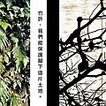 植物手染酷卡201202