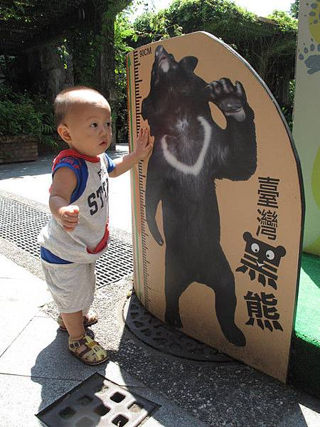 7/24 與台灣黑熊有約