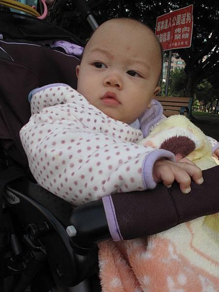 2/22 仁愛公園散步
