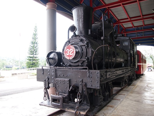P8193135-1