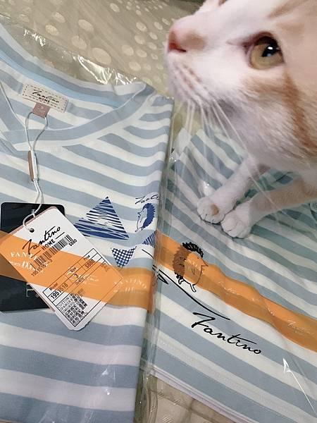 居家服實品開箱貓貓也來湊熱鬧