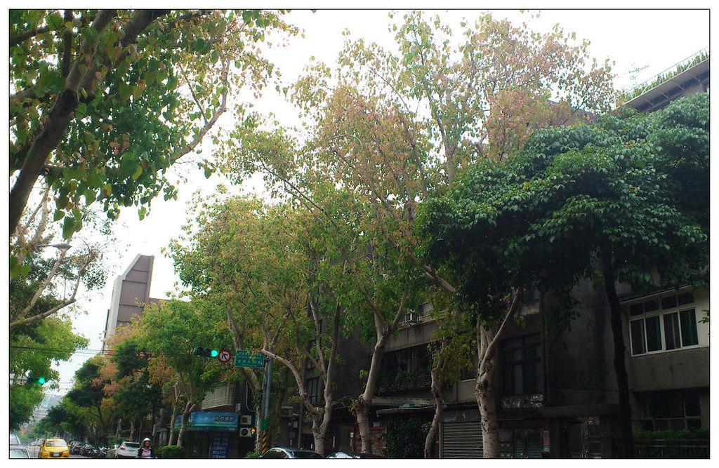 北市富錦街景